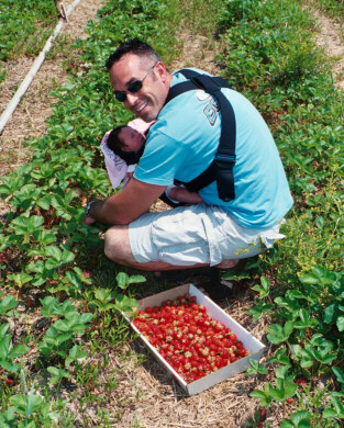 Mike Picking Strawberries with Olivia